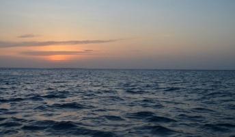 太平洋 発信元が特定できない低い音域の奇妙な音を観測