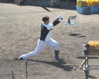 阪神2位井上「慣れました」フリー打撃柵越え12本