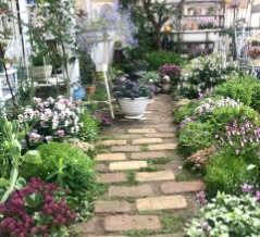 *ドワーフコンフリー|植えっぱなしで咲く花