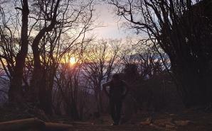早朝の丹沢大山から