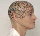 【ハゲてもカッコイイ!】米MITの女性脳学者、脳の講義説明の為に現場で長髪バッサリ!ツルッパゲへへ