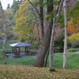 『函館市民の森とトラピスチヌ修道院の紅葉』の画像