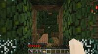 大きなツリーハウスを作る (3)