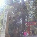 『箱根神社(九頭龍神社)/ 神奈川 箱根 神社 お水取り』の画像