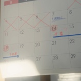 『【乃木坂46】『11月14日』に予定を詰め込みすぎ問題wwwwww』の画像