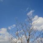 『青空でてます』の画像