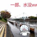 『【堀川クルーズ】船に乗らずに走ってみたwww (*・ω・)ノ ランナーですから♪』の画像