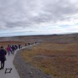 『アイスランド旅行記7 圧倒的な水量、大迫力のグトルフォス(黄金の滝)』の画像