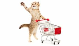 【ニュース】  日本人男性(48) 猫120匹の食費代(1日2万5千円)のために 窃盗を繰り返し 逮捕。  海外の反応