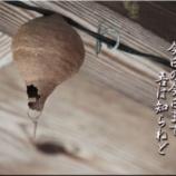 『上を向いて歩こう!』の画像