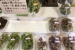 神宮寺のぶどうが最終シーズンに突入してるみたい!〜直売所ではピオーネなども旬な感じ〜