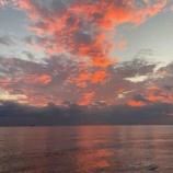 『幕張の海』の画像