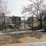 『春の景色(3/31)』の画像