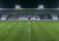 ◆悲報◆代表10番中島翔哉が移籍するカタールリーグの観客は桜…1試合€45で雇われる