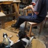 『チン太と椅子つくり』の画像