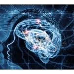 めちゃくちゃ脳みそを活性化させるにはどうしたらいい?