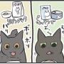 やっぱり他猫が食べてるものが美味しそうに見える