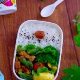 『野菜炒め弁当とゴーヤタルタルサンドのお昼ご飯』の画像