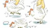 【閲覧注意】自衛隊は訓練で生きた鶏や蛇を自ら捌いて喰うらしい