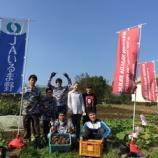 『Maroon Waseda Farm by TAO Tokorozawa Project Vol.25(20151024)』の画像