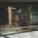 『【貧富の差】カンヌ最高賞受賞で世界的大ヒット中の韓国映画「パラサイト 半地下の家族」。人々の関心は平和、恋愛、AI、環境を超えて経済格差か。』の画像