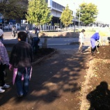 『戸田市五差路で花の植え替え(鍛冶谷町会)』の画像