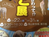 『周南市徳山動物園の2017夏の企画展(今年は○○○だ!!)』の画像