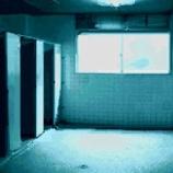 『【恐怖体験】学校に女子トイレで見た「すみれの壁飾り」』の画像