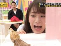 【乃木坂46】日村勇紀、うっかり「秋元可愛いなぁ」と本音を吐露wwwwwwww(画像あり)
