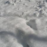 『大寒波!!』の画像