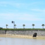 『ウーチアサの夏(10)』の画像