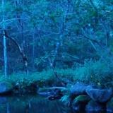 月と蛍ーロのサムネイル