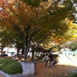 『戸田市の価値のひとつは身近に綺麗で憩える公園が多いことかも』の画像