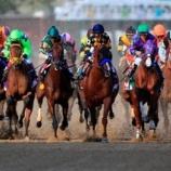 『人工知能と競馬』の画像