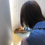 『[イコラブ] さなつんとのんので、小動物と遊べるカフェに行く【=LOVE(イコールラブ)】』の画像