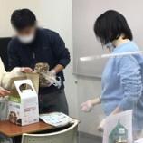 『【早稲田】キノコのこのこ♪元気の子♪♪』の画像