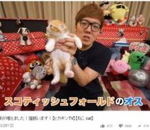 『ヒカキンが金澤朋子と同じ種類の猫飼い始めてワロタwwwwwwwww』の画像