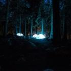 『深夜1時に山奥へとやって来た車の目的に恐怖したキャンプの思い出』の画像