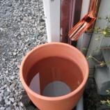 『花粉を水で流す』の画像