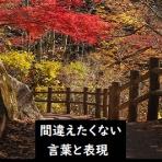 ~間違えがちな日本語を知る~