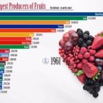 【動画】世界の国別フルーツ生産量ランキング(1960-2018)を「動くグラフ」にしてみた!