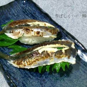 念願のバーナー購入!鰯の炙り寿司