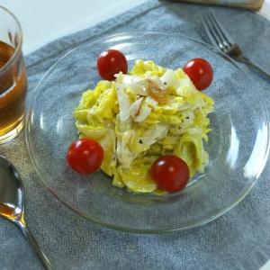 春のお野菜で爽やかに♪新タマネギと春キャベツの温サラダ