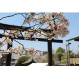 『春季大祭』の画像