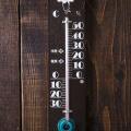 1686年5月14日は、温度計の日