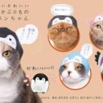 猫ガチャ、かわいいかわいい ねこのかぶりものシリーズに「コウペンちゃん」が登場
