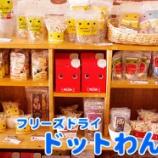 『【新商品】国産食材使用!フリーズドライのドットわんのおやつ入荷しました!』の画像