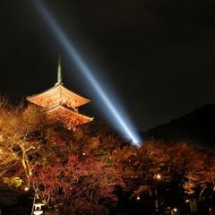 京都・東山祈りの灯り(京都・東山花灯路2011)