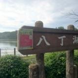 『「八丁湖」~ねこ!~』の画像