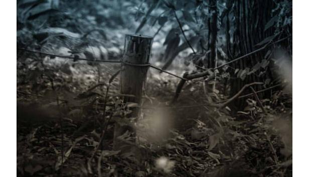 「進撃の巨人」の英訳者が語る世界中の大ヒット理由